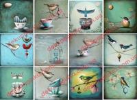 К-0135 птицы